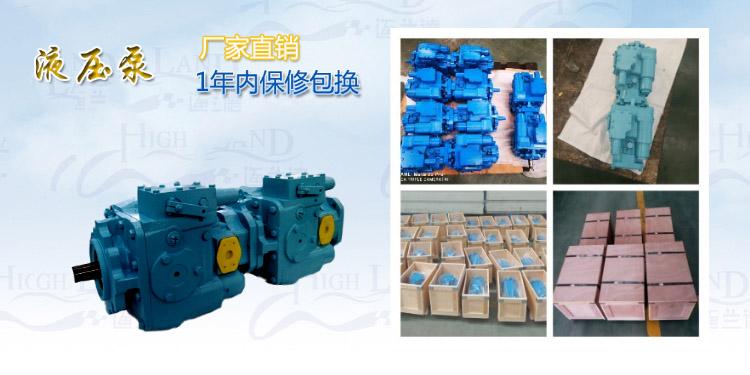 比例双联泵生产厂家
