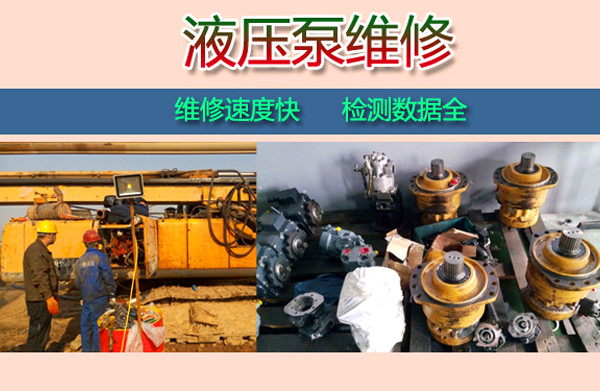 海兰德液压泵维修起重机